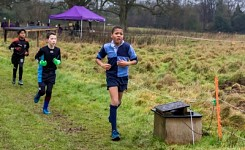 York House Cross Country