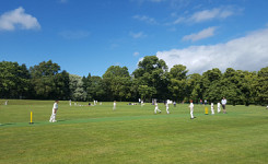 The Grove U9 Cricket vs Maidwell Hall